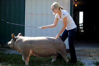 Brownstown teen shows grand champion gilt