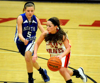 Brownstown girls JV team makes mark by forging season-long undefeated streak