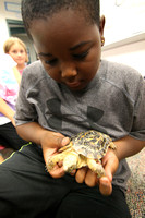 Classroom critters - Animals in school help teach responsibility