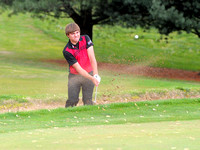 Brownstown beats Cougars at Hickory Hills Golf Club