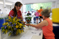 Participants submit garden projects for fair