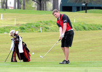 Brownstown golfer???s offseason work pays off on course