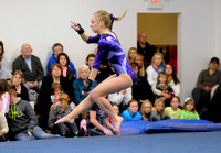Seymour sophomore gymnast reaches goal
