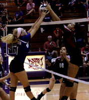 Seymour setter scores big for Owls