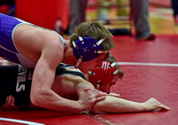 3 Seymour wrestlers advance to semistate