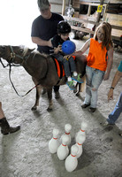 EQUINE program helps people with disabilities