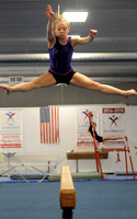 Flying high - Owls gymnast aims for state meet
