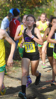 Owls girls team punches ticket to state meet
