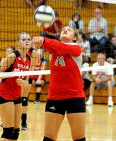Orleans topples Hornets in 3 sets